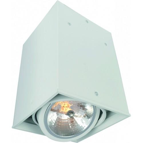 Потолочный светильник Arte Lamp Cardani A5936PL-1WH