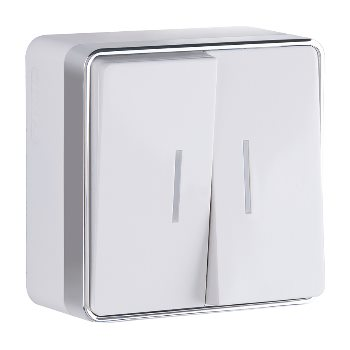 Выключатель двухклавишный накладной с подсветкой Werkel Gallant белый WL15-03-03